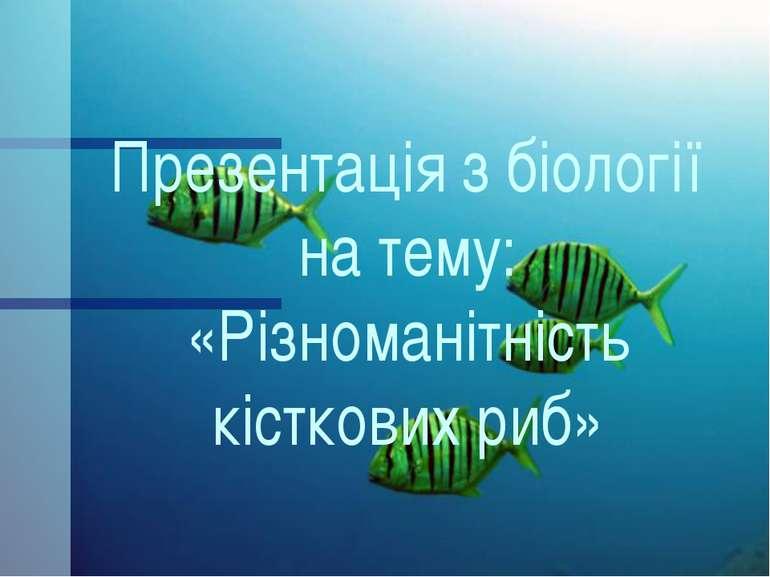 Презентація з біології на тему: «Різноманітність кісткових риб»