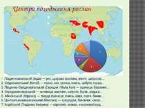 1. Південноазіатський (Індія)— рис, цукрова тростина, манго, цитрусові… 2. С...