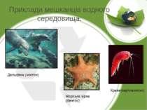 Приклади мешканців водного середовища: Дельфіни (нектон) Морська зірка (бенто...