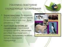 Наземно-повітряне середовище проживання Характеристика: Розріджена. Велика кі...