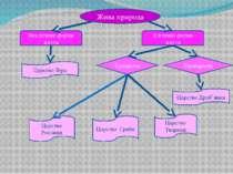 Жива природа Неклітинні форми життя Клітинні форми життя Царство Віра Еукаріо...
