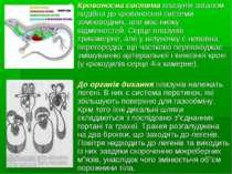 Кровоносна система плазунів загалом подібна до кровоносної системи земноводни...