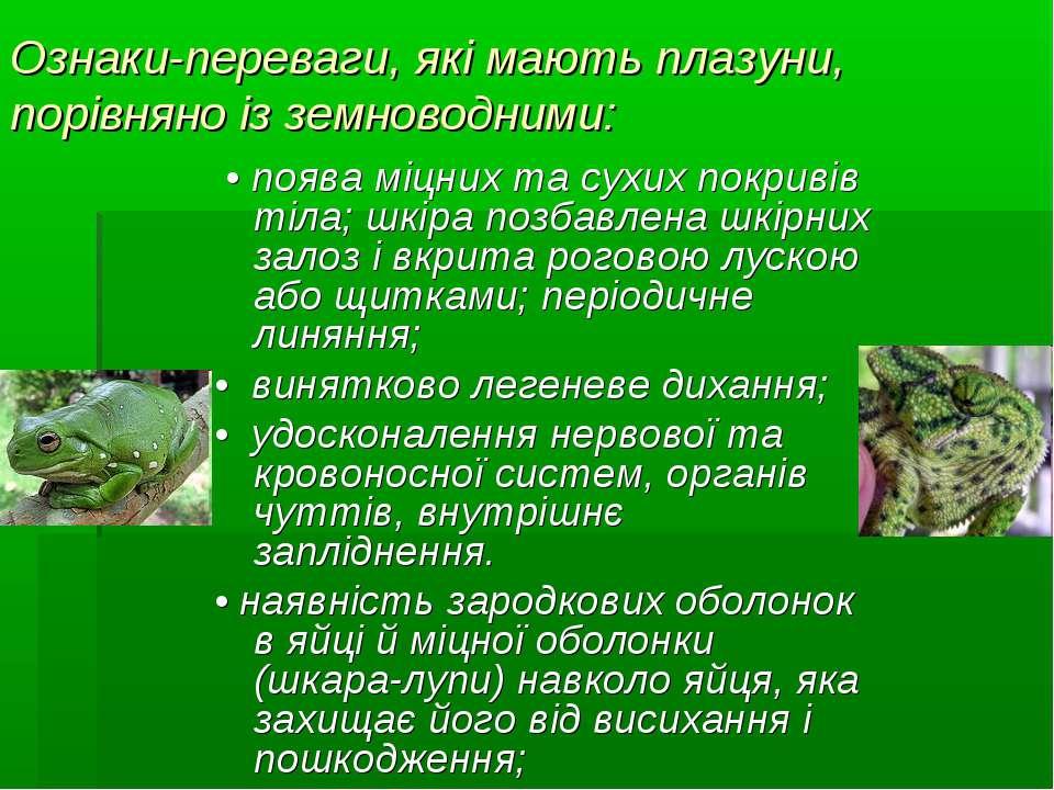 Ознаки-переваги, які мають плазуни, порівняно із земноводними: • поява міцних...