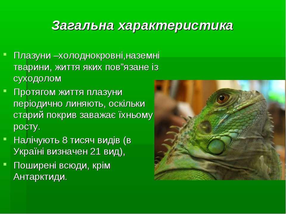 """Плазуни –холоднокровні,наземні тварини, життя яких пов""""язане із суходолом Про..."""
