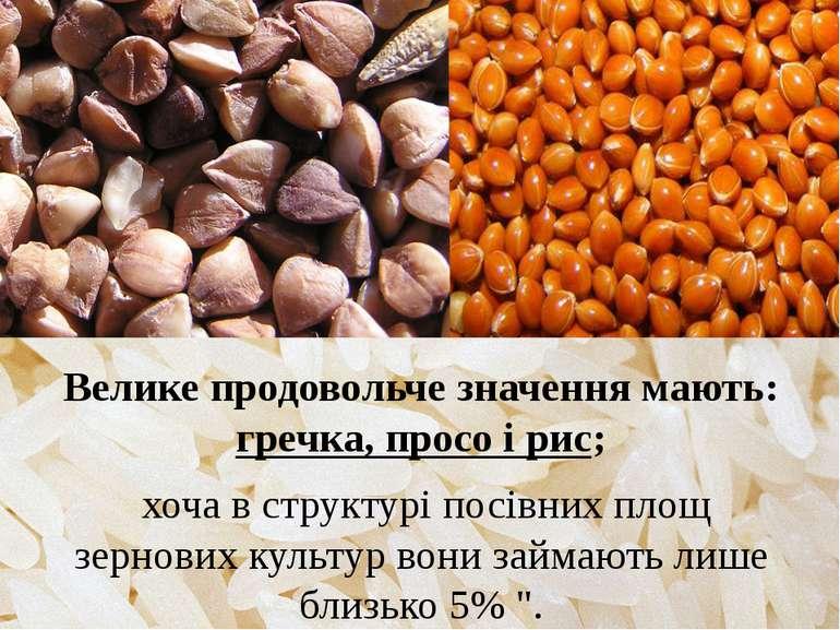 Велике продовольче значення мають: гречка, просо і рис; хоча в структурі посі...
