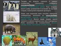 Тварин, які можуть існувати в умовах понижених температур, називають холодолю...