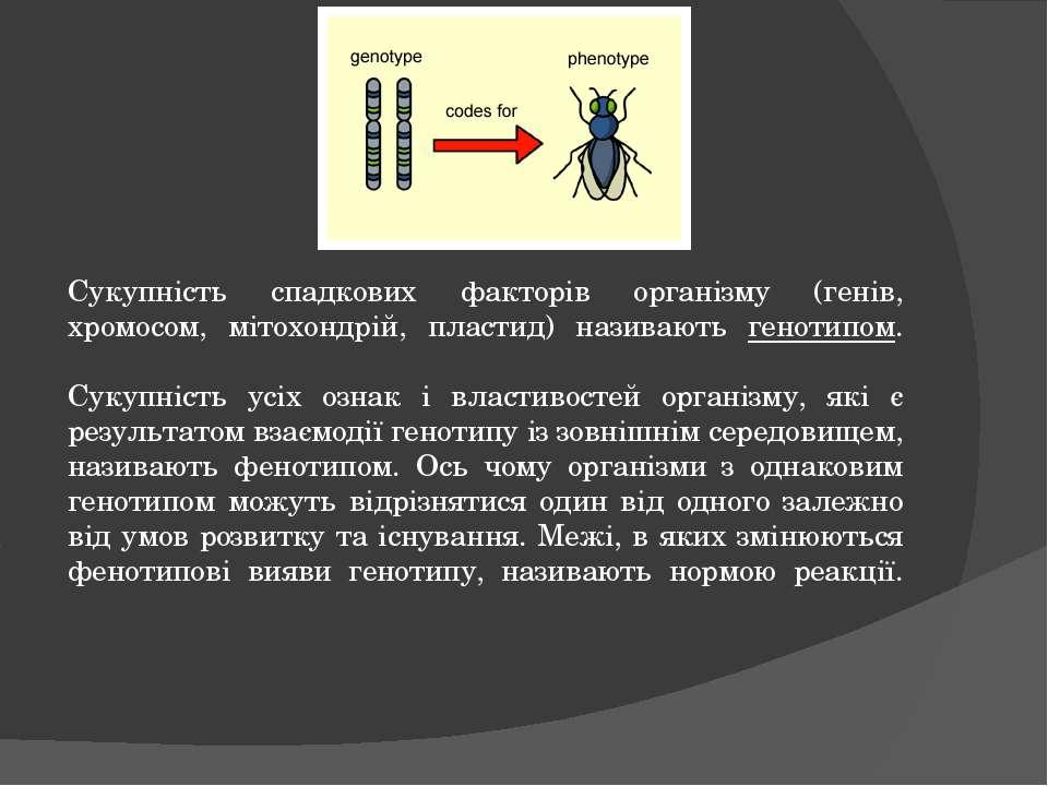 Сукупність спадкових факторів організму (генів, хромосом, мітохондрій, пласти...