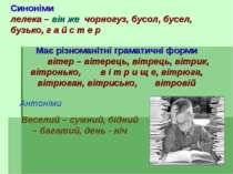 Синоніми лелека – він же чорногуз, бусол, бусел, бузько, г а й с т е р Має рі...