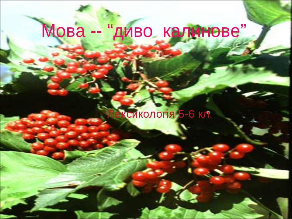 """Мова -- """"диво калинове"""" Лексикологія 5-6 кл."""