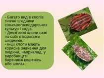- Багато видів клопів значні шкідники сільськогосподарських культур і садів. ...
