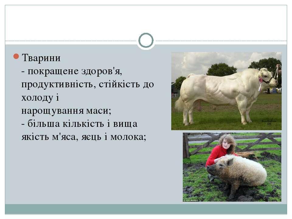 Тварини - покращене здоров'я, продуктивність, стійкість до холоду і нарощуван...