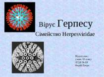 Вірус Герпесу Сімейство Herpesviridae Підготував : учень 10 класу ЛСШ № 69 Фе...