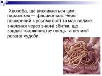 Хвороба, що викликається цим паразитом —фасциольоз. Черв поширений в усьому ...