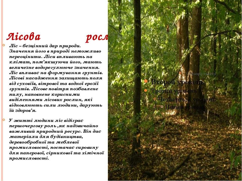 Лісова рослинність Ліс – безцінний дар природи. Значення його в природі немож...
