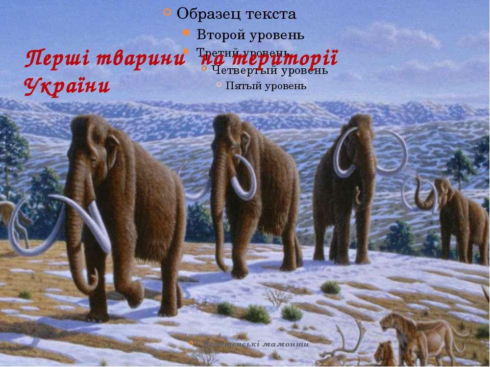 Перші тварини на території України Велетенські мамонти