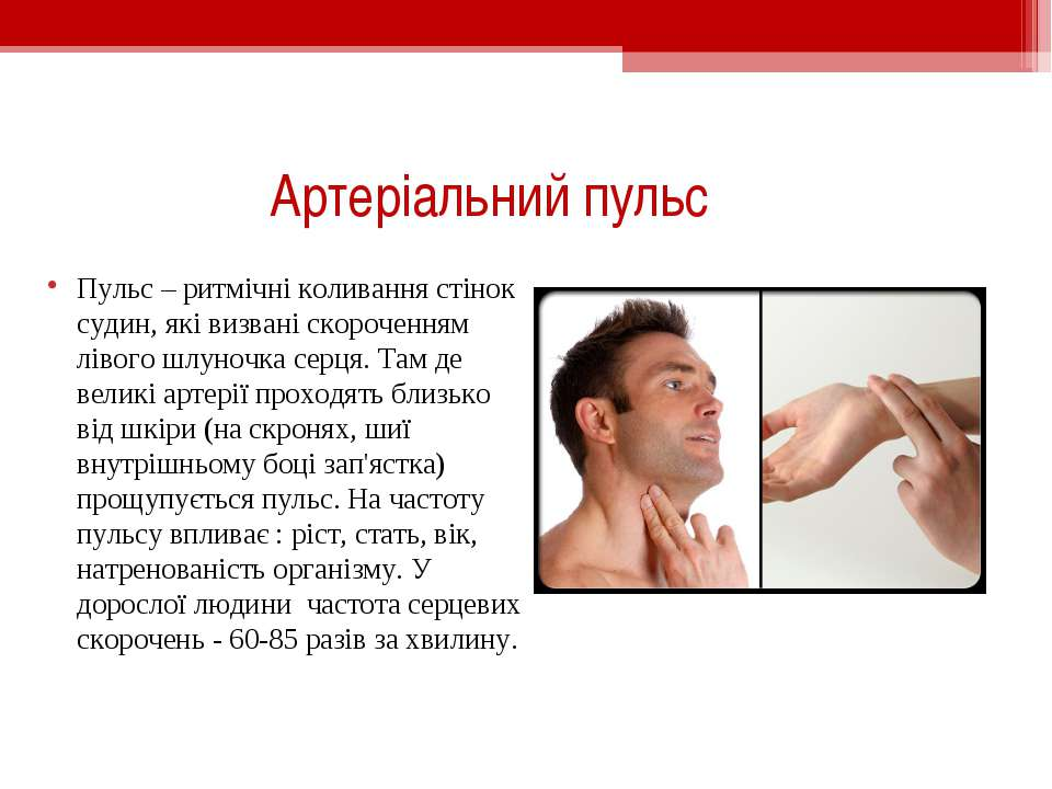 Артеріальний пульс Пульс – ритмічні коливання стінок судин, які визвані скоро...
