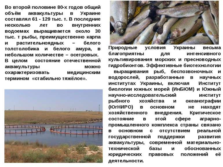 Природные условия Украины весьма благоприятны для интенсивного культивировани...