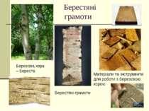 Берестяні грамоти Матеріали та інструменти для роботи з березовою корою Берез...