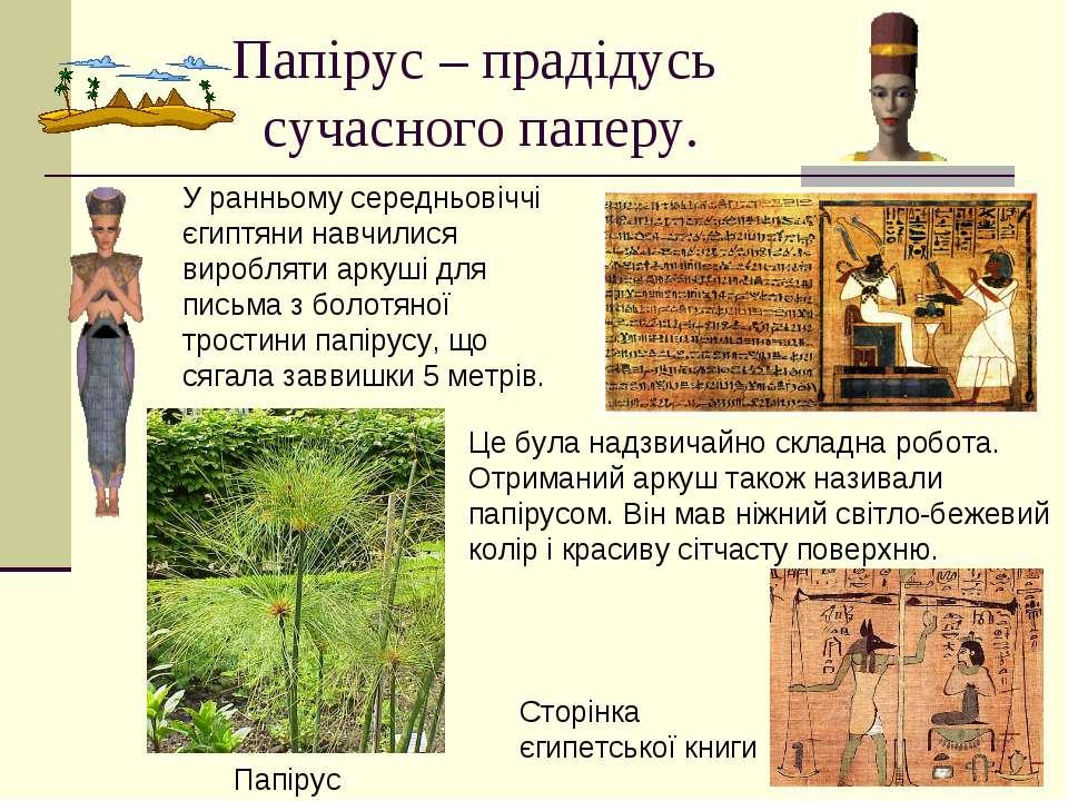 Папірус – прадідусь сучасного паперу. У ранньому середньовіччі єгиптяни навчи...