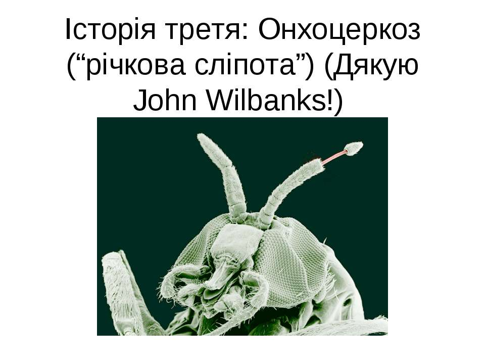 """Історія третя: Онхоцеркоз (""""річкова сліпота"""") (Дякую John Wilbanks!)"""