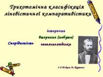 Трихотомічна класифікація лінгвістичної компаративістики І.О.Бодуен де Куртене