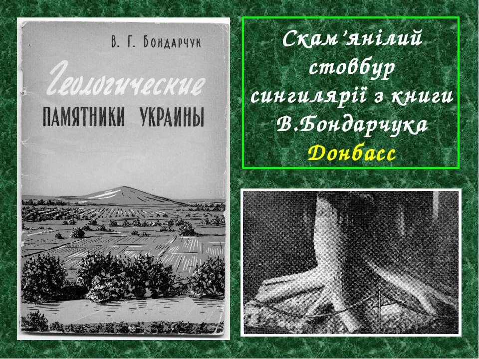Скам'янілий стовбур сингилярії з книги В.Бондарчука Донбасс
