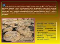 Виходячи з того, що розріз неогену у межах розташування пагорбу «Кам'яна Моги...