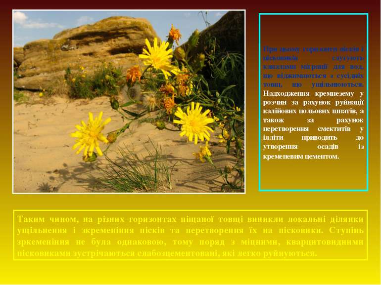 При цьому горизонти пісків і пісковиків слугують каналами міграції для вод, щ...