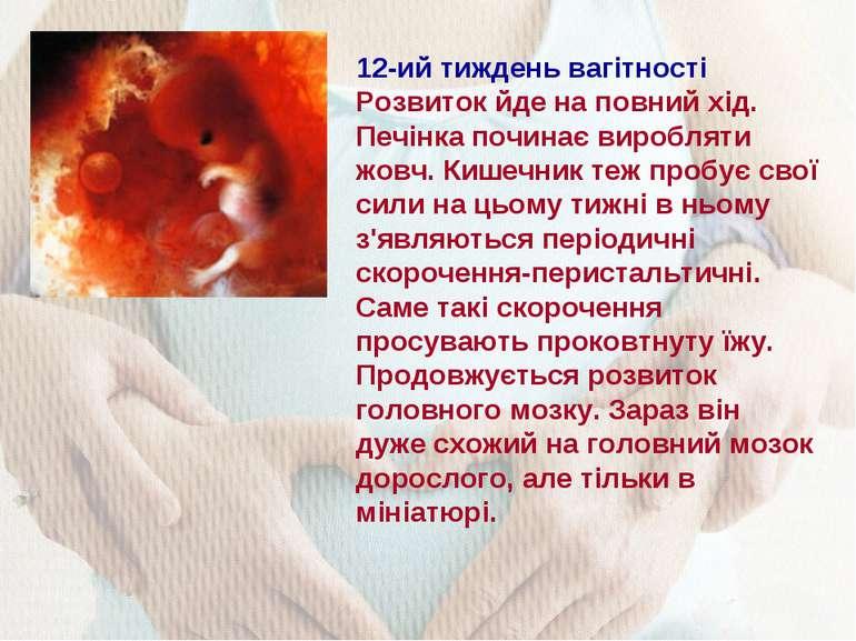 12-ий тиждень вагітності Розвиток йде на повний хід. Печінка починає вироблят...