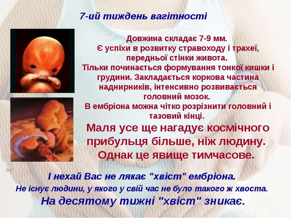 7-ий тиждень вагітності Довжина складає 7-9 мм. Є успіхи в розвитку стравоход...