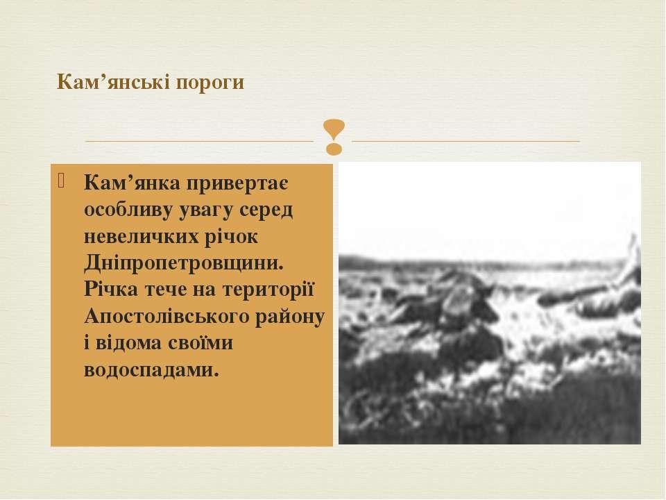 Кам'янські пороги Кам'янка привертає особливу увагу серед невеличких річок Дн...