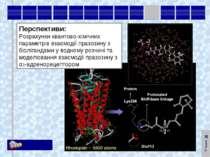 Перспективи: Розрахунки квантово-хімічних параметрів взаємодії празозину з бі...