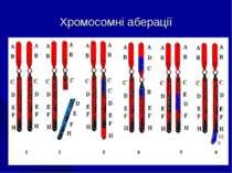 Хромосомні аберації