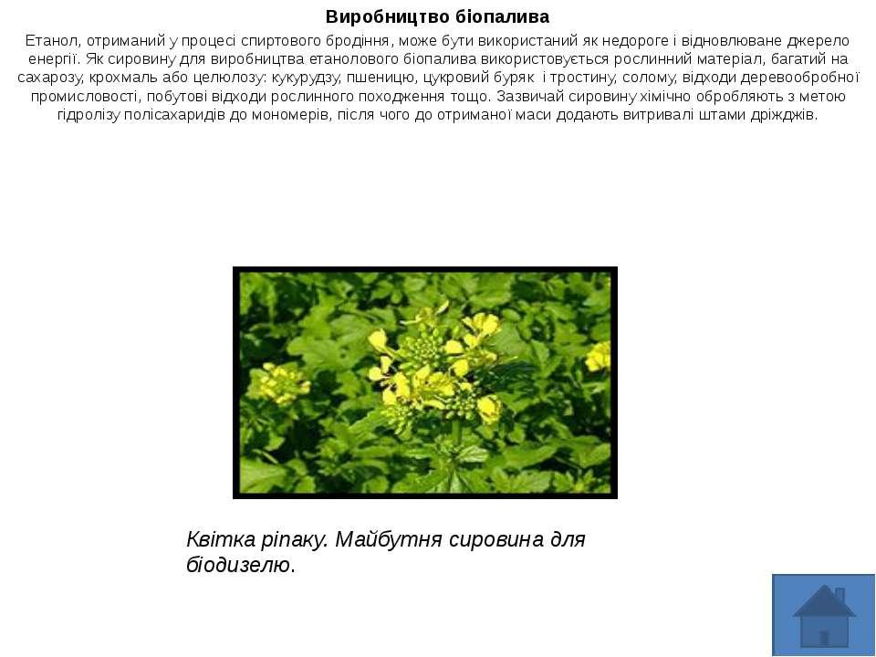 Виробництво біопалива Етанол, отриманий у процесі спиртового бродіння, може б...