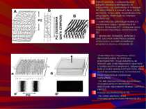Рідкий кристал у найпростішому випадку можна представити як структуру, що скл...