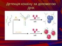 Детекція кокаїну за допомогою ДНК