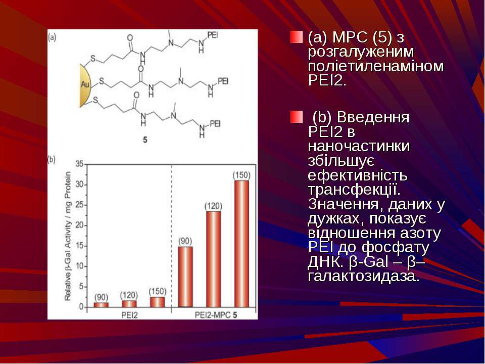 (a) MPC (5) з розгалуженим поліетиленаміном PEI2. (b) Введення PEI2 в наночас...