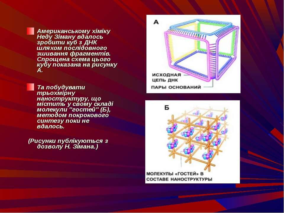 Американському хіміку Неду Зіману вдалось зробити куб з ДНК шляхом послідовно...