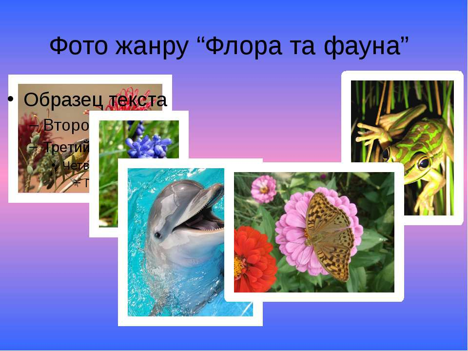 "Фото жанру ""Флора та фауна"""