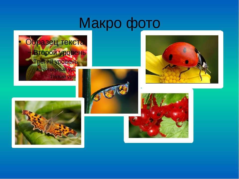 Макро фото