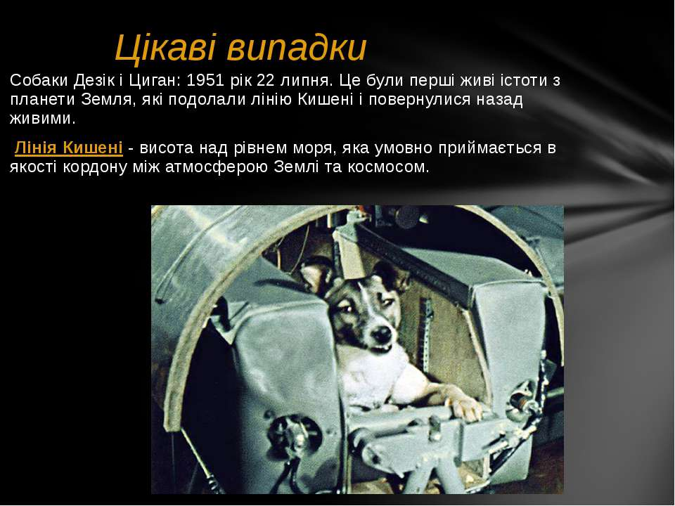 Цікаві випадки Собаки Дезік і Циган: 1951 рік 22 липня. Це були перші живі іс...