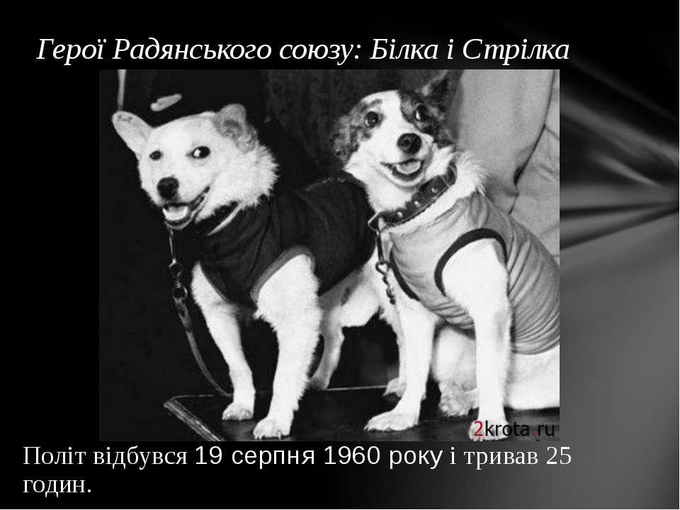 Герої Радянського союзу: Білка і Стрілка Політ відбувся 19 серпня 1960 року і...