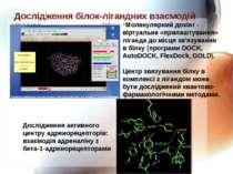 Дослідження білок-лігандних взаємодій Молекулярний докінг - віртуальне «прила...