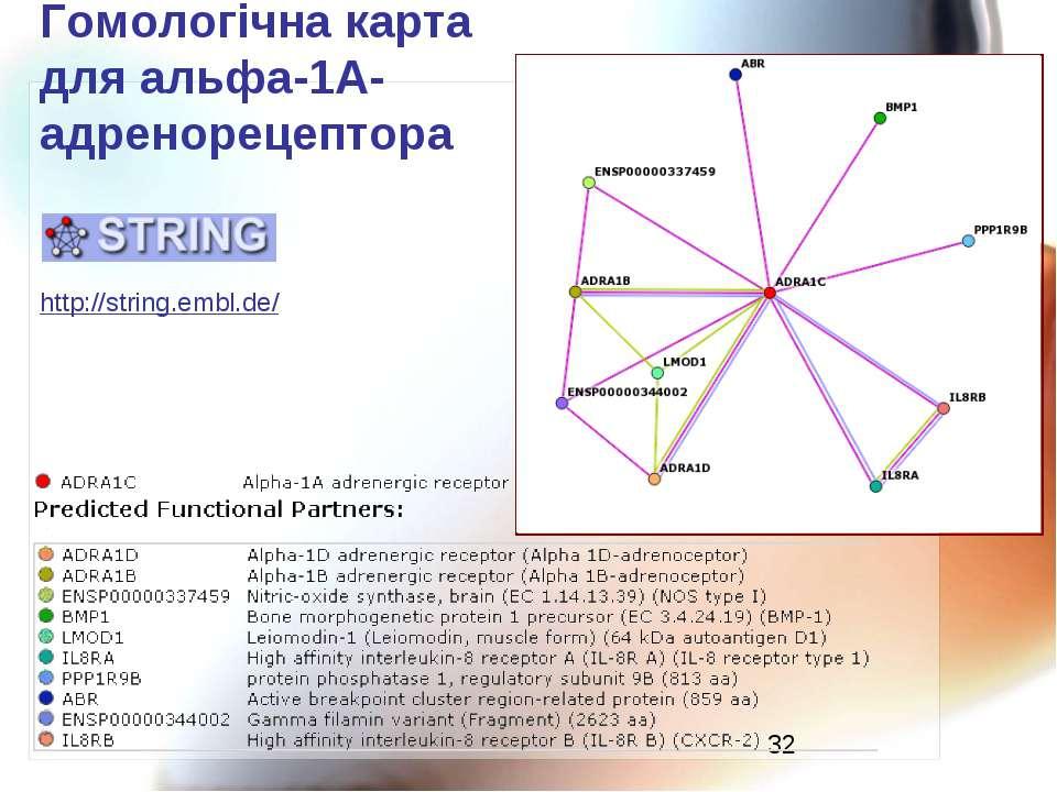 Гомологічна карта для альфа-1А-адренорецептора http://string.embl.de/