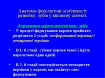 Анатомо-фізіологічні особливості розвитку зубів у віковому аспекті. Формуванн...