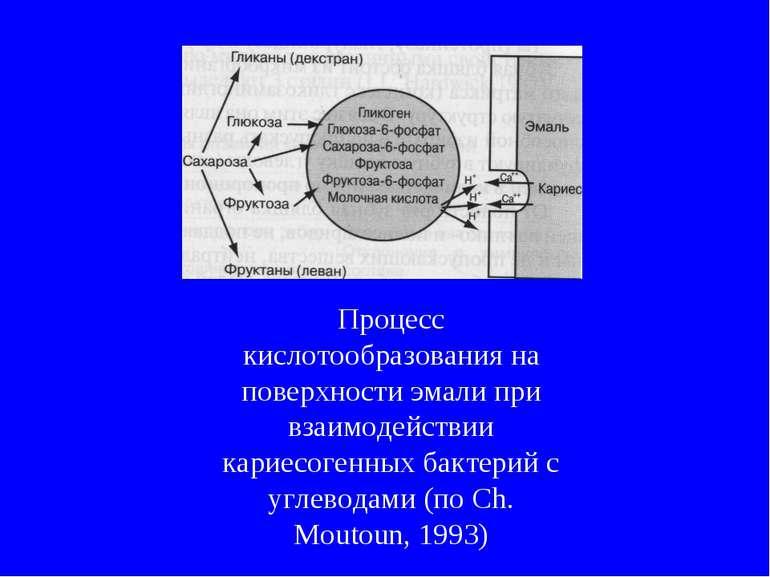 Процесс кислотообразования на поверхности эмали при взаимодействии кариесоген...