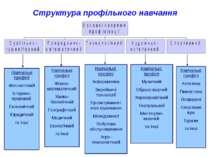 Структура профільного навчання