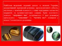 Найбільш видатний, відомий далеко за межами України, декоративний зкремнілий ...