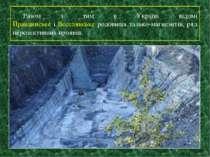 Разом з тим в Україні відомі Правдинське і Веселянське родовища талько-магнез...