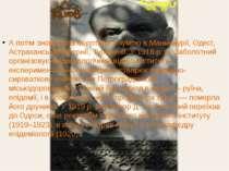 А потім знову була боротьба з чумою в Маньчжурії, Одесі, Астраханській губерн...
